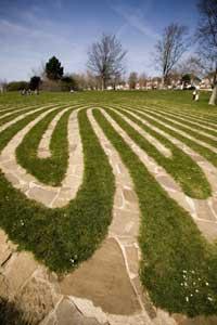 grass_lines2