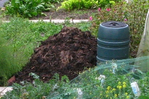 Allotment compost heap
