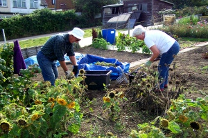Allotment workers