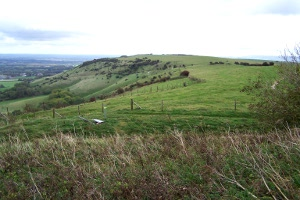 Ditchling Beacon view