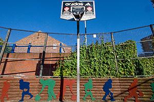 Phoenix Rise Basketball Installation