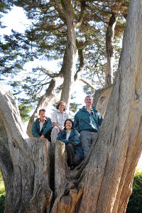 Park Rangers in tree