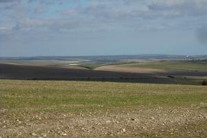 Saltdean view