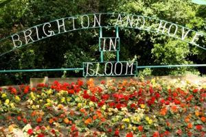 Brighton & Hove in Bloom