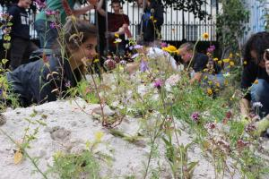 Planting wild flowers in the butterfly bank in Brighthelm Gardens