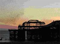 West Pier starlings