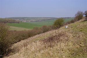 whitehawk hill